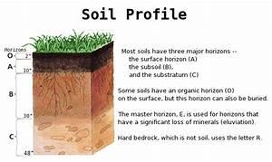 Ms  Nickel U0026 39 S Lec Earth Science Blog  Soil  Soil
