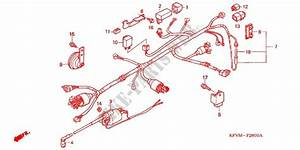 Honda Ex5 Dream Wiring Diagram  Honda  Schematic Symbols