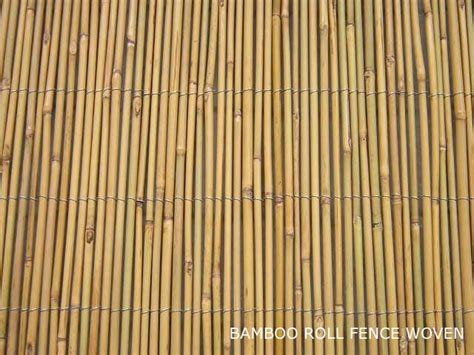 bamboo fencing rolls bamboo grove photo bamboo fence rolls 4294
