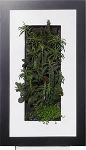 Tableau Végétal Mural : tableau v g talis cactus photo de cadre vegetal mural ~ Premium-room.com Idées de Décoration