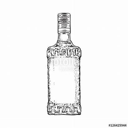 Bottle Tequila Sketch Vector Drawn Liquor Illustration