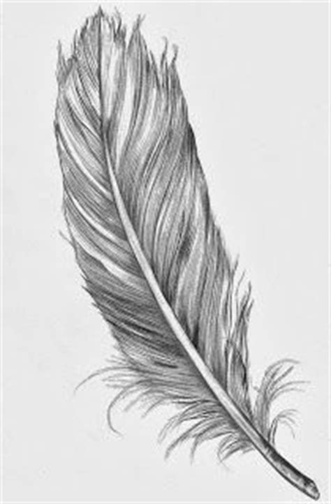 feather drawing tumblr - Google Search | Make-ables