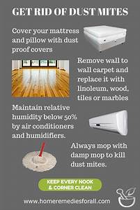 Learn how to get rid of dust mites. Dust mites can cause allergic reactions such as skin rashes ...  Allergy Rid