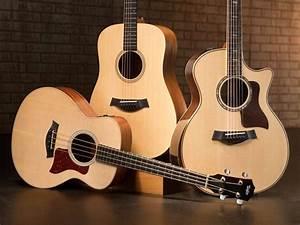 Top 5 best Acoustic Guitar Brands Worldwide - Sound Tricker