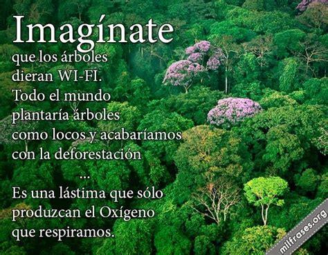 frases ecologicas para cuidar el medio ambiente buscar con ecologia nature wifi y
