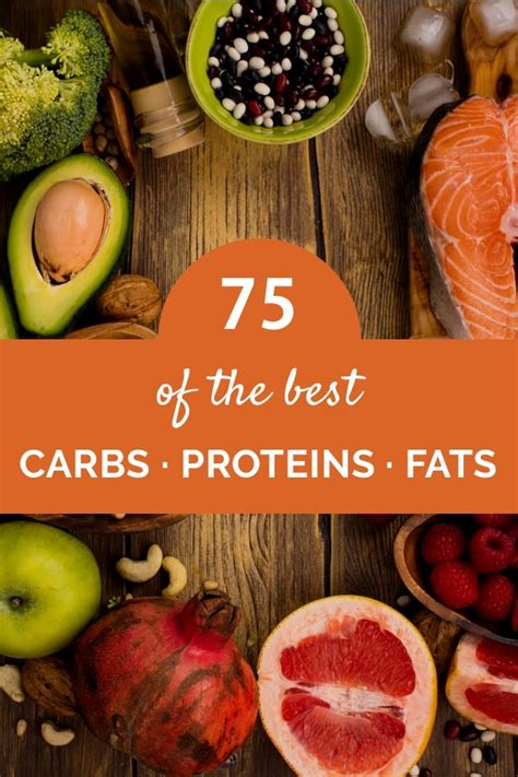 top  healthy carb protein  fat rich foods