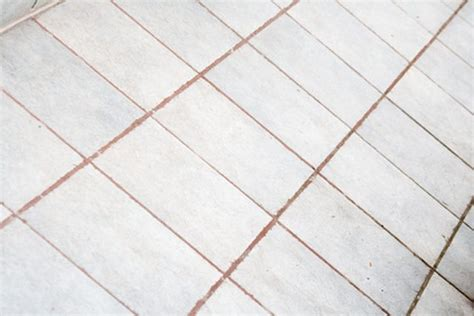 how to remove urine stains from grout hunker