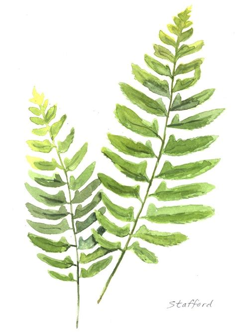 17 Best Images About Leaves On Pinterest Botanical