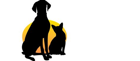 indianapolis vets veterinarian  indianapolis animal