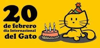 el  del gato se celebra el  de febrero  imagenes de gatos  compartir