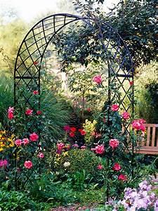 Tipps Für Den Garten : tipps f r den rosengarten zuhause wohnen ~ Markanthonyermac.com Haus und Dekorationen