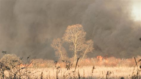 Hundreds Of Acres Destroyed In Grass Fire Wednesday In
