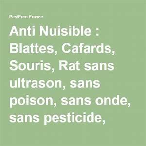 Tuer Les Cafards : anti nuisible blattes cafards souris rat sans ultrason sans poison sans onde sans ~ Melissatoandfro.com Idées de Décoration