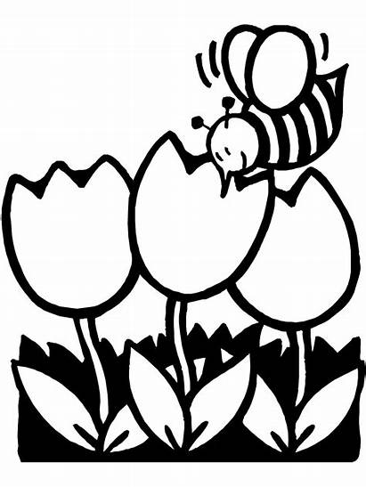 Coloring Spring Pages Colouring Printable Sheets Clip