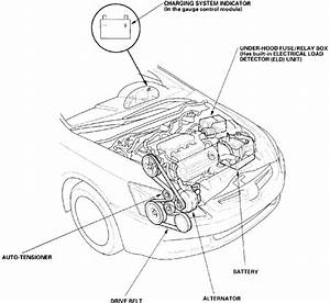 2005 Honda Accord Drive Belt Diagram