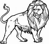 Lion Coloring Pages Realistic Printable Clipart Challenge Above Another sketch template