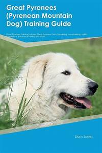 great pyrenees guard dog training guide great pyrenees With great pyrenees dog house plans