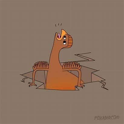 Chicken Animation Fox Egg Lol Domination Def
