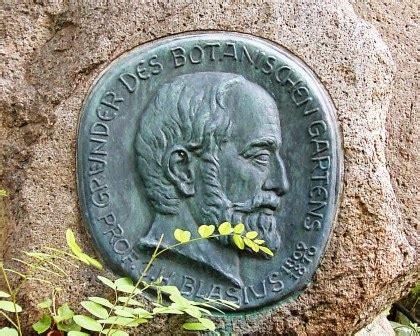 Italiener Botanischer Garten Braunschweig by Geschichte Tu Braunschweig