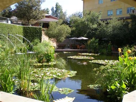 coy fish pond designs koi fish pond design landscaping network