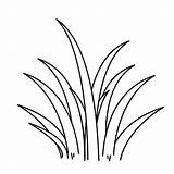 Grass Coloring Pages Drawing Plants Clipart Outline Line Sheet Wild Tall Colouring Flower Colorluna Templates Clipartmag Printable Sheets Printables Visit sketch template