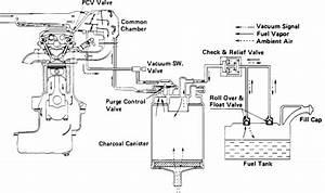 2003 isuzu npr circuit diagram imageresizertoolcom With isuzu npr pump