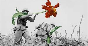 Artist Replaces Guns With Flowers In Historic Photos ...