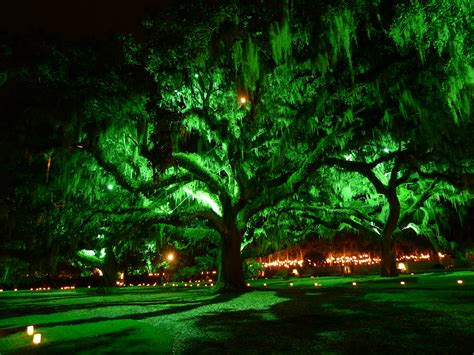 brookgreen gardens of a thousand candles nights of a thousand candles brookgreen gardens 11 Lovely