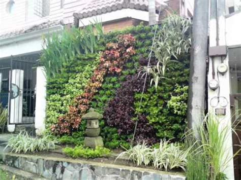 Of Vertical Gardens by Vertical Garden Wmv