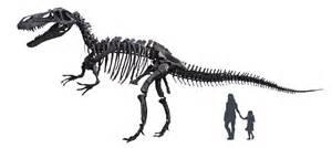 Torvosaurus Related Ke...Torvosaurus Vs Tyrannosaurus