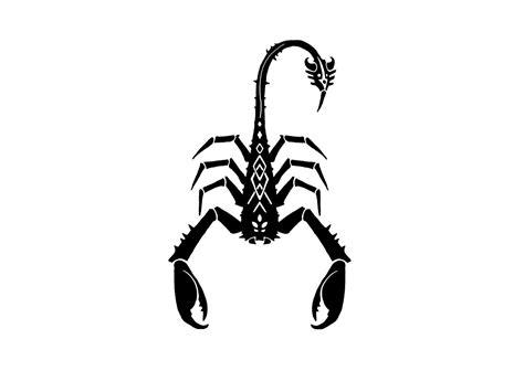 scorpion wallpaper  gallery