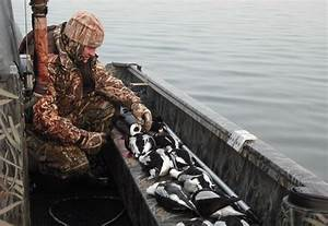 Maine Sea Duck Hunting Guide