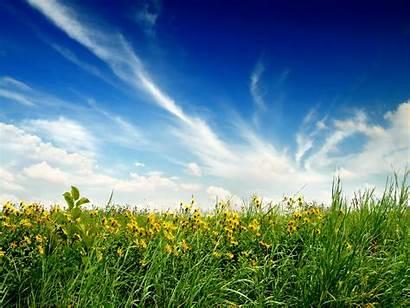 Summer Midsummer Bliss Dream Days End Background