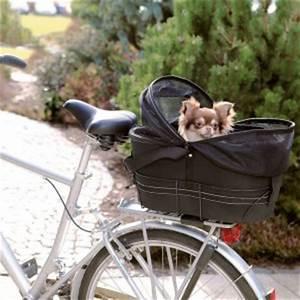 Fahrradkorb Hund Hinten : hunde fahrradkorb hinten fahrradkorb f r hunde ~ Kayakingforconservation.com Haus und Dekorationen