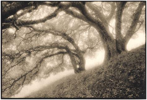 june   bill helsel photography el cerrito