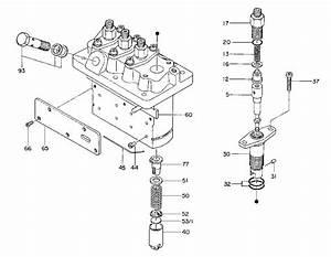 Overhaul Repair Kit For Kubota 4 Cylinder Np