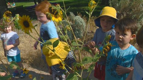 outdoor preschool in boise aims to let get 329 | 591823734 1140x641
