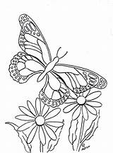 Butterfly Coloring Pages Print Printable Flower Copy Sheets Butterflies Flowers Coloringpagesbymradron Paintable Adult Printables Drawings Daisy Adron Mr sketch template
