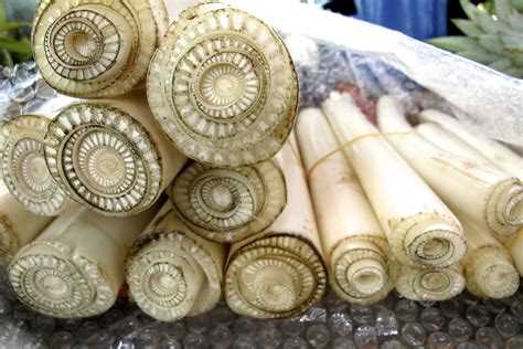 prepare banana stem  cooking pranees thai kitchen