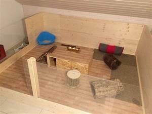 Kaninchengehege Bauen Innen : diy innengehege f r meine kaninchen projekt sammy shelly pinterest kaninchen hase und tier ~ Frokenaadalensverden.com Haus und Dekorationen