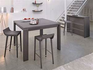 Table Cuisine Grise : photo table et chaise de cuisine grise ~ Teatrodelosmanantiales.com Idées de Décoration