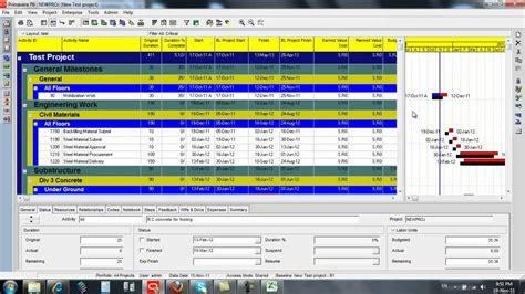reports cash flow  manpower histogram