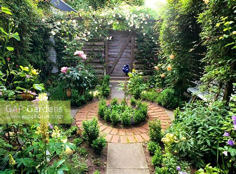 Gap Gardens-small Urban Garden With Young Buxus Plants