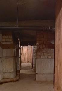 Hortensien überwintern Im Keller :  ~ Lizthompson.info Haus und Dekorationen