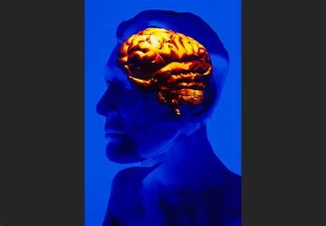 Mācīšanās rada izmaiņas smadzenēs - DELFI