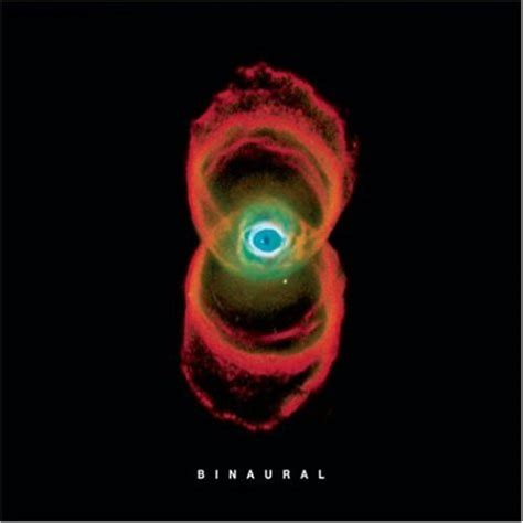 pearl jam binaural album cover parodies