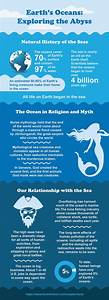 101 Interesting Facts About The Ocean