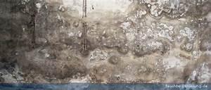 Aufsteigende Feuchtigkeit Innenwand : feuchte sanierung schadensbilder ~ Frokenaadalensverden.com Haus und Dekorationen