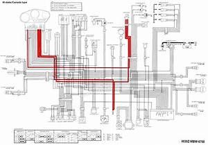 Sony Head Unit Wiring Harnes