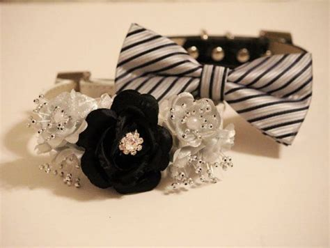 Wedding Accessories For Dogs : Black And Silver Wedding Dog Accessories, Dog Collar With